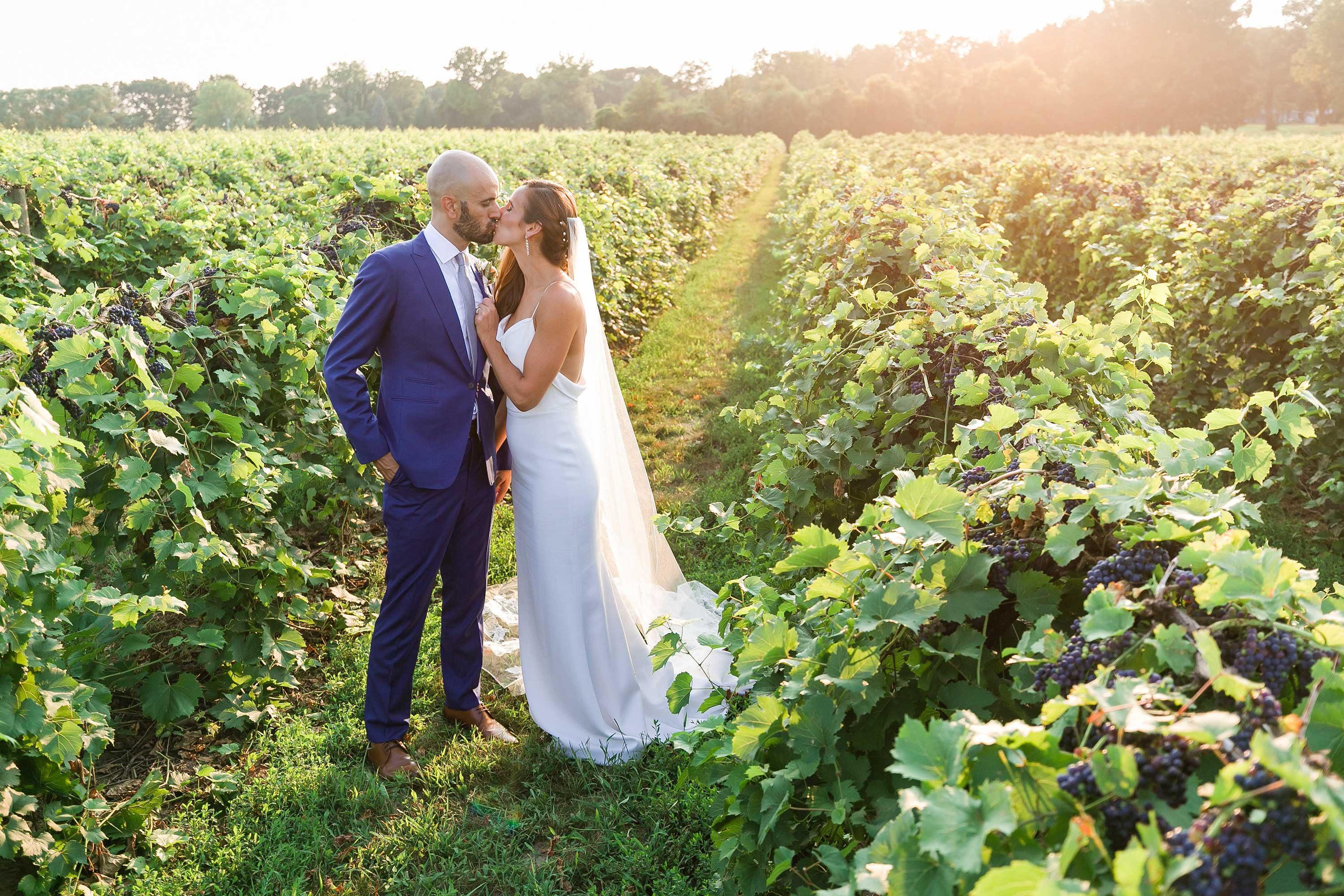 Bride and groom in a vineyard in Michigan